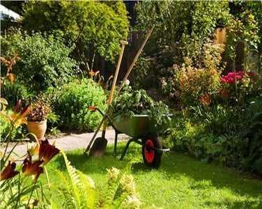 Bahçe bakım hizmetleri